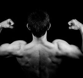 muscoli di un pornostar di spalle